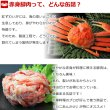 画像2: 紅ずわいがに 赤身脚肉 缶詰(125g缶) 24缶入 (2)