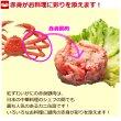 画像3: 紅ずわいがに 赤身脚肉 缶詰(75g缶) 24缶入 (3)